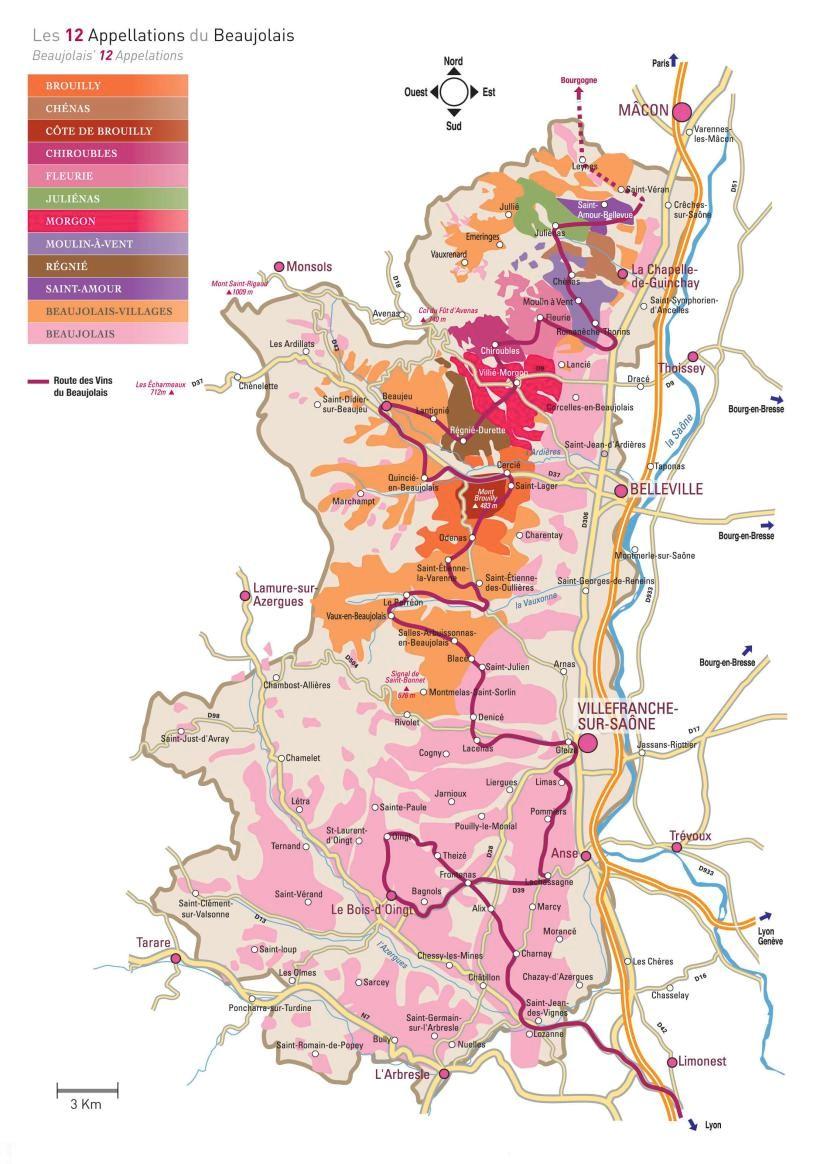 Vignoble dans le beaujolais