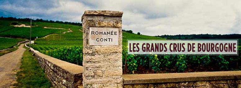 Les grands crus de bourgogne place des grands vins - Cuisiner les escargots de bourgogne ...